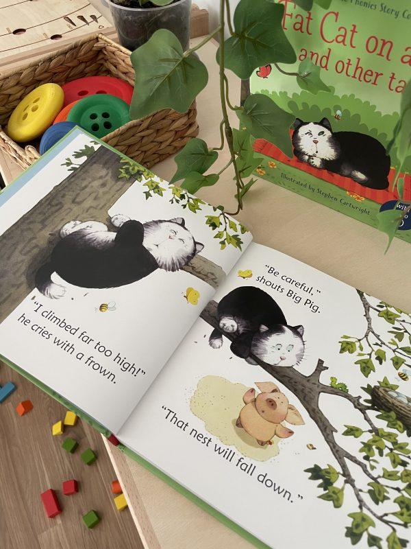 usborne fat cat książki dla dzieci